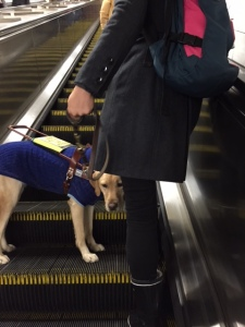Jingles on escalator